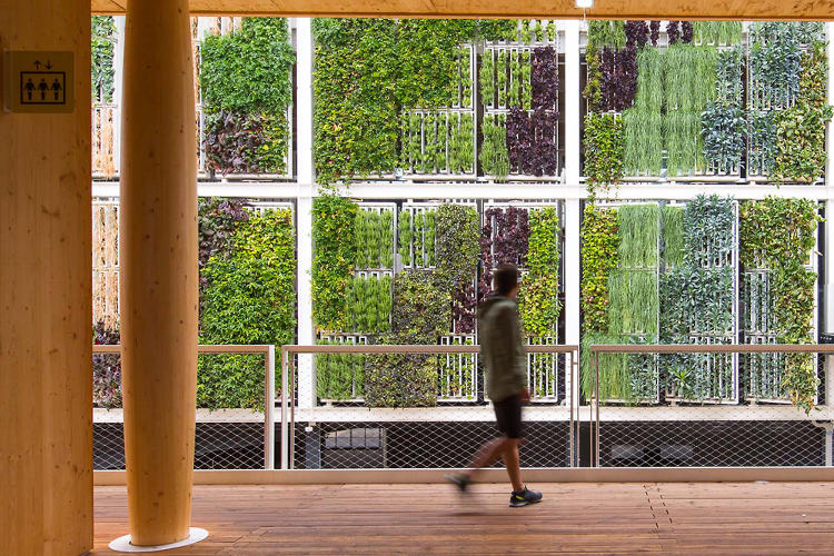 <p>Bright Agrotech, a Wyoming-based vertical farming company, designs lightweight hydroponic farm systems that can attach to any unused wall space along sidewalks or behind buildings.</p>
