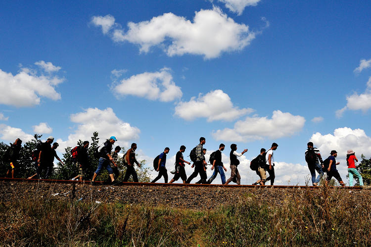 <p>Refugees walking along an old railway line, just after passing across the border with Serbia. Many of them have walked up to 50 kilometers.</p>
