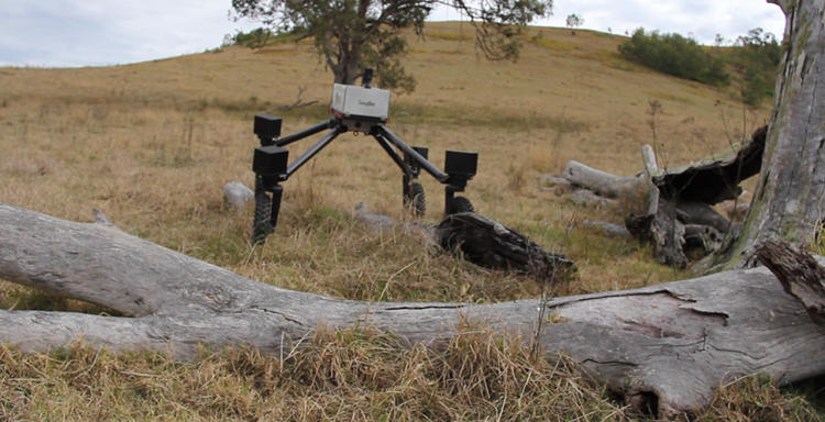 <p>Swagbot, an Australian cowboy robot, is designed to herd cattle on sprawling ranches.</p>