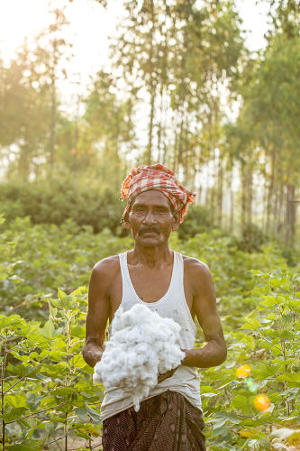 <p>A Chetna Organic worker with raw cotton.</p>