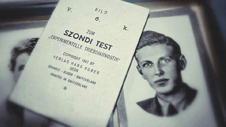 <p>The Szondi Test</p>