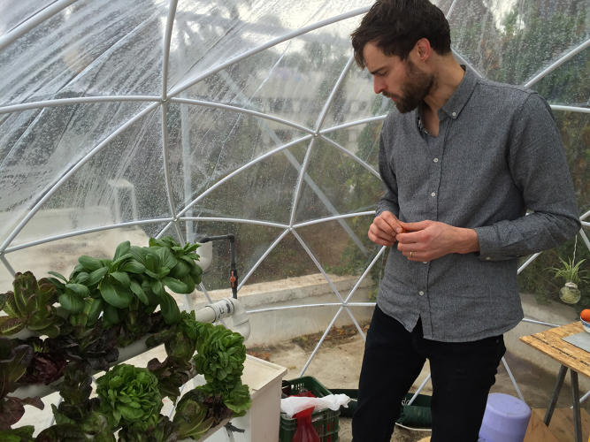 <p>While growing food in a hydroponic greenhouse on Mars might bear some resemblance to vertical farming in a city on Earth, there are challenges:</p>