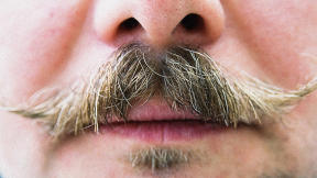 What's A Movember Mustache Worth In Your City?
